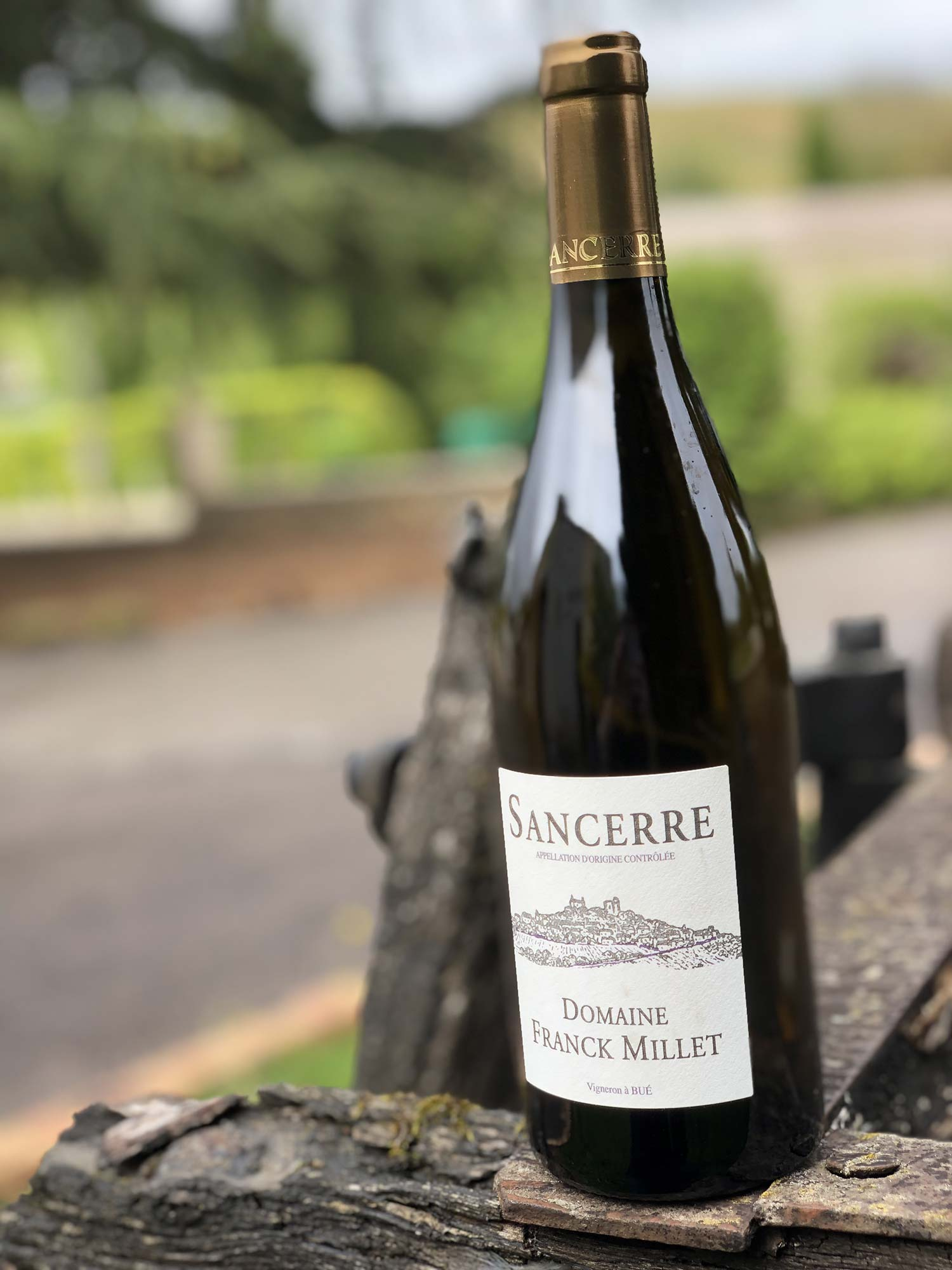 SANCERRE-ROUGE-IMG